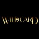 Wild Card City Casino